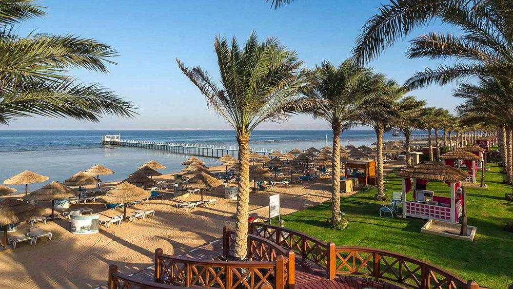 Чартеры в Египет восстановят?