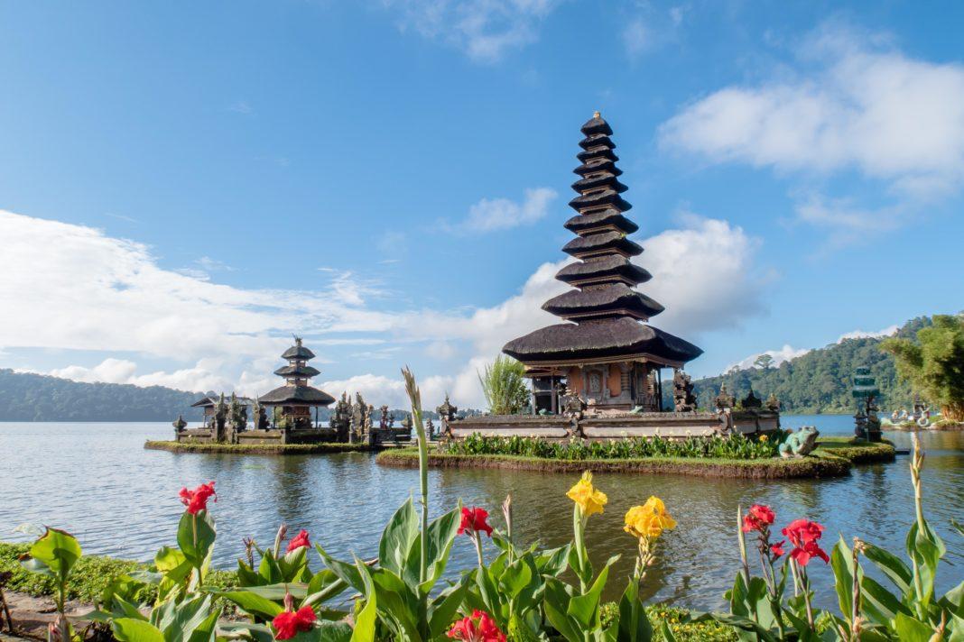 остров Бали охватил голод