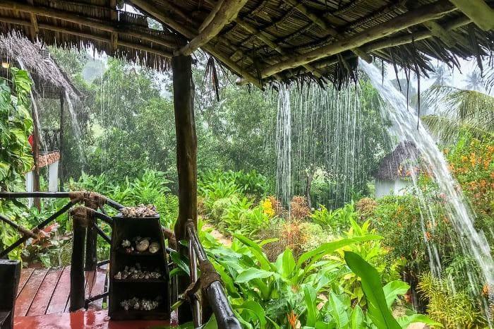 Сезон дождей на Занзибаре