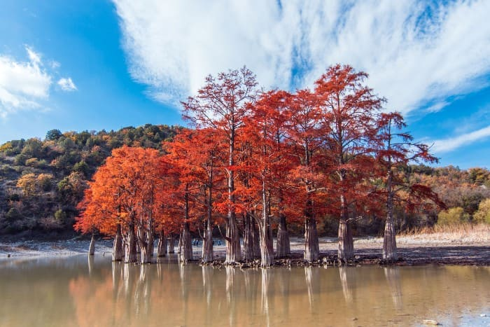 Кипарисовое озеро в Анапе осенью